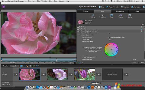 Skærmbillede Adobe Premiere Elements Windows XP