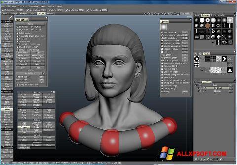 Skærmbillede 3D-Coat Windows XP