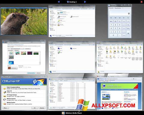 Skærmbillede Dexpot Windows XP