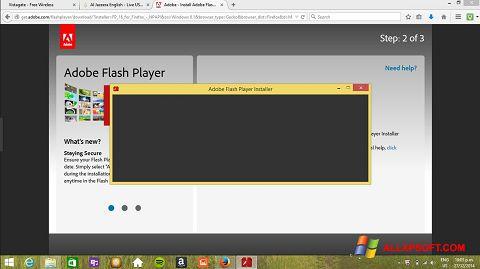 Skærmbillede Adobe Flash Player Windows XP