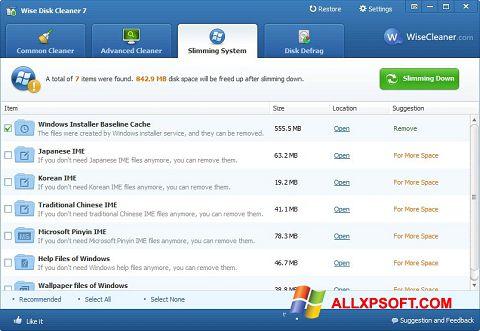Skærmbillede Wise Disk Cleaner Windows XP