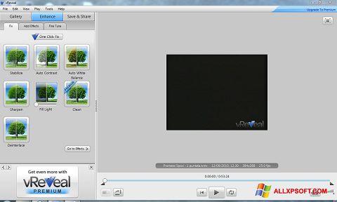 Skærmbillede vReveal Windows XP