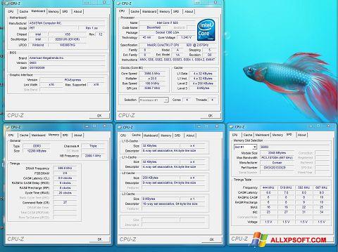 Skærmbillede CPU-Z Windows XP