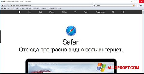Skærmbillede Safari Windows XP
