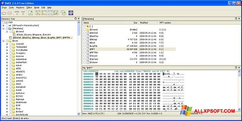 Skærmbillede DMDE Windows XP